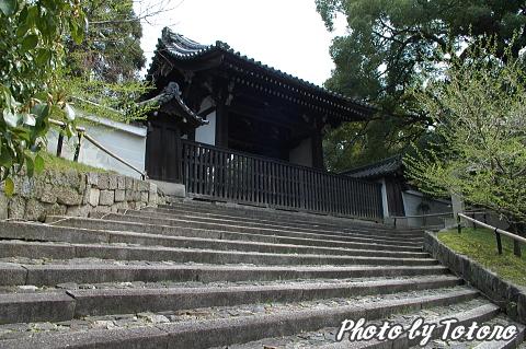 higasiyama1-030.jpg