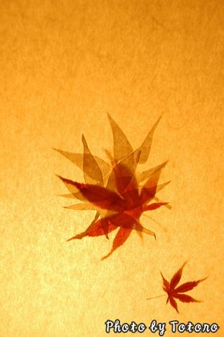 kourokann009.jpg