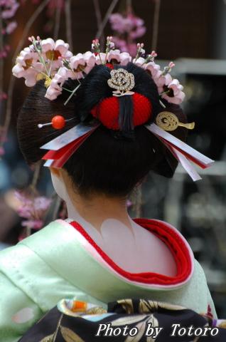 maiko006.jpg
