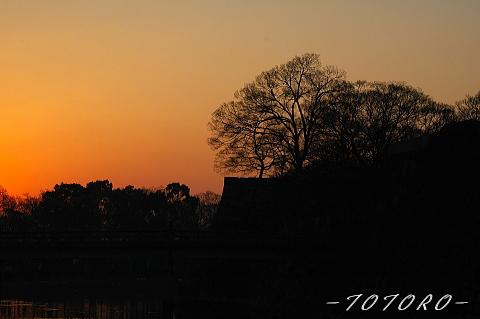 oosakazyou01-003.jpg