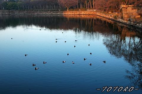 oosakazyou01-008.jpg