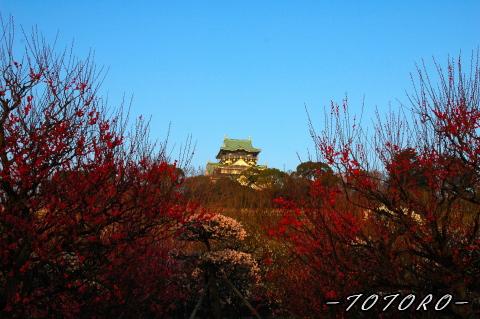oosakazyou01-011.jpg