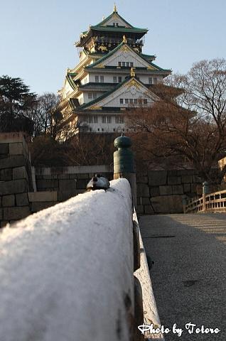 oosakazyou013.jpg