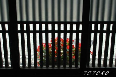oouda2-010.jpg