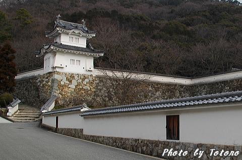 tatunozyou001.jpg