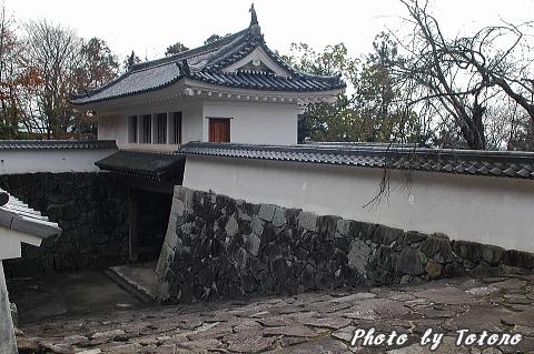 tatunozyou004.jpg