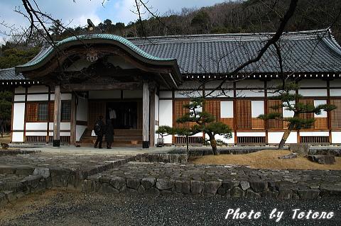 tatunozyou005.jpg