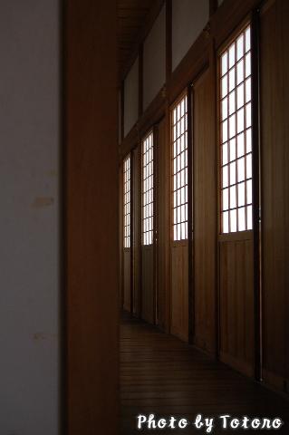 tatunozyou009.jpg