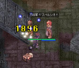 hikari_2.jpg