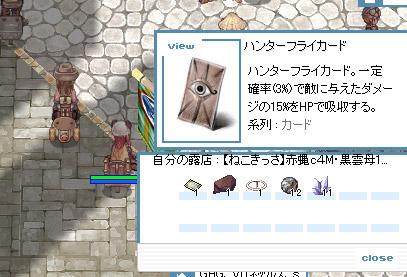 hikari_3.jpg