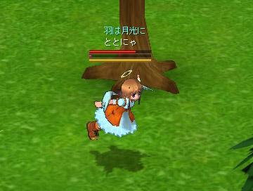 songbird_3.jpg