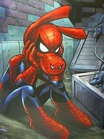 spiderhumm.jpg