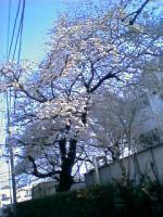 07-03-29_15-56.jpg