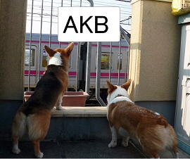 AKB(1).jpg