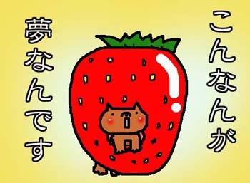 ichigowanko.jpg