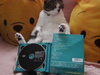 山崎まさよしアルバム