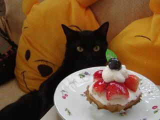 豆蔵誕生日