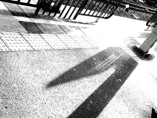 P9104220-2.jpg