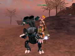 黒狐 Lv31