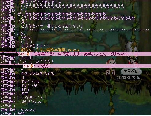 Maple000432.jpg