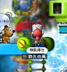 Maple000439.jpg