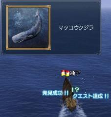 20051113211008.jpg