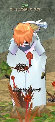 mabinogi_2005_04_21_017.jpg