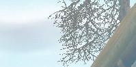 mabinogi_2005_05_06_007_.jpg