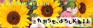 81156_1116310164.jpg