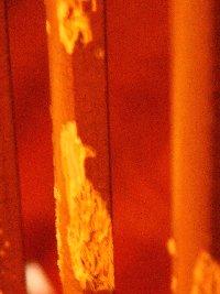 orange1-2-2.jpg