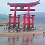 2005-0505-1217.jpg
