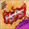 Through the Fire / Hagar Schon Arronson Shrieve